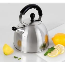 Чайник TalleR TR-1342 2.5 л